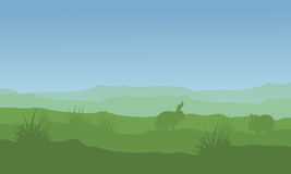 Silhouette of rabbit and easter landscape Stock Images