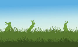 Silhouette of rabbit on field scenery. Vector illustration Royalty Free Stock Photo