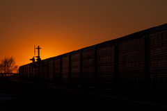 Silhouette of Railway Auto Cars Against Golden Sunset Royalty Free Stock Photos