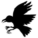Silhouette of raven Royalty Free Stock Images