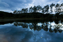 Silhouette and reflection of trees and clouds Stock Photos