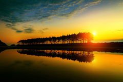 Silhouette and Reflections of row tree. Royalty Free Stock Photos