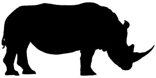 Silhouette rhino. Isolated on white background Royalty Free Stock Image