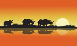 Silhouette of a rhinoceros africa Hill Royalty Free Stock Photo