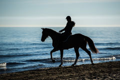 Silhouette of Rider at the beach riding horse Royalty Free Stock Photos