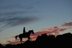 Silhouette of a rider on a horse Royalty Free Stock Image