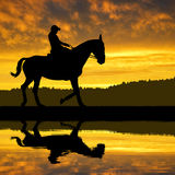 Silhouette of a rider on a horse Stock Photos