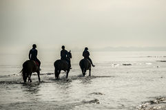 Silhouette of Riders at the beach riding horses Royalty Free Stock Photos