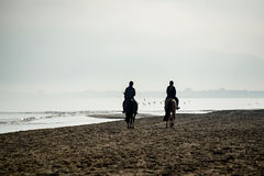 Silhouette of Riders at the beach riding horses Royalty Free Stock Photo