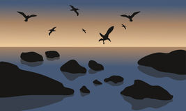 Silhouette of rock and bird in beach Royalty Free Stock Photos