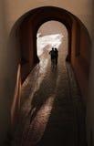 Silhouette romantique de couples Photo libre de droits