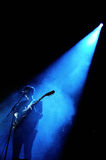 Silhouette of Romy Madley, singer and guitarist of The XX Stock Photo