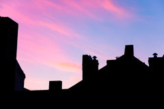 Silhouette of the roof with a blue and pink sky Stock Images