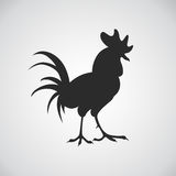 Silhouette of the rooster on white background. Domestic bird. The symbol of the new year Stock Photos