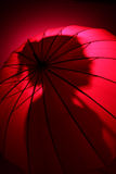 Silhouette rose Photographie stock