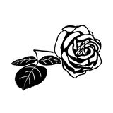 Silhouette of rose Stock Image