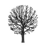 Silhouette round tree. On a white background Stock Photo
