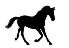 Silhouette of a running horse Stock Image