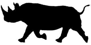 Silhouette running rhino. Stock Photo