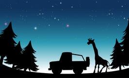 Silhouette safari Stock Image