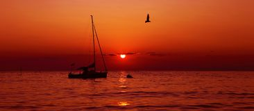 Silhouette of a sailboat between the sunrise under a red sky with flying seagulls. stock photo