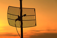 Silhouette satellite communication antenna Royalty Free Stock Images