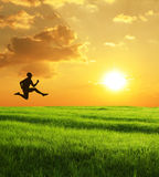 Silhouette sautante photo libre de droits