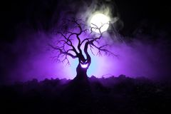 Silhouette of scary Halloween tree with horror face on dark foggy toned background with moon on back side. Scary horror tree with. Zombie and monster demon Stock Photo