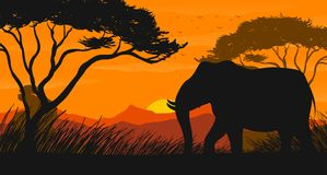 Silhouette scene with elephant in the field. Illustration Royalty Free Stock Photos