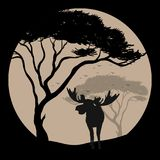 Silhouette scene with moose at fullmoon night royalty free illustration