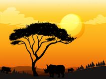 Silhouette scene with rhino in the field. Illustration Royalty Free Stock Photography