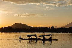 A silhouette scene of tourist Shikara boat in Dal lake with Srinagar fort as a background , Kashmir Royalty Free Stock Image