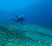 Silhouette of Scuba Diver near Sea Bottom Stock Photography