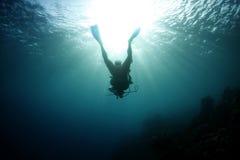 Silhouette scuba diver tropical,roatan,honduras Royalty Free Stock Image