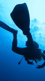 Silhouette scuba diving. Stock Image