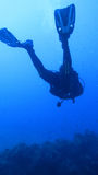 Silhouette scuba diving. Royalty Free Stock Photo