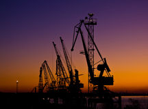 Silhouette of several cranes in a harbor Royalty Free Stock Image