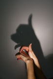 Silhouette shadow of dog Royalty Free Stock Photo
