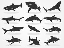 Silhouette shark set Stock Photo