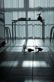 Silhouette of shoes in room. Silhouette of shoes on a tile floor in empty dining room at night by table, near large window Royalty Free Stock Image