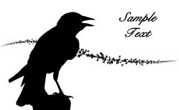 Silhouette of a singing bird Stock Photography