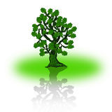 silhouette of single beautiful oak tree with reflection Stock Image