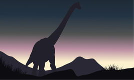Silhouette of single brachiosaurus in hills Stock Image