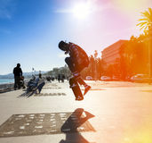 Silhouette of skateboarder Royalty Free Stock Image
