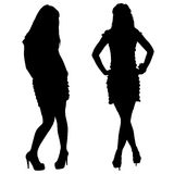 Silhouette of the slender woman with beautiful Stock Image