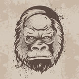 Silhouette snout gorillas, monkeys in retro style Stock Photo