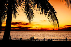 Silhouette some people on the beach sunset in twilight. Silhouette some people and coconut palm tree on the sand beach with color of sunset in twilight Stock Image
