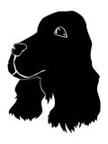 Silhouette of spaniel. Series with pets Stock Photography