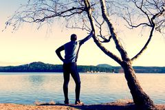 Silhouette of sport active man in running leggins and blue shirt at birch tree on  beach. Calm water, island and sunny day Royalty Free Stock Image