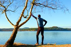Silhouette of sport active man in running leggins and blue shirt at birch tree on  beach. Calm water, island and sunny day Royalty Free Stock Photos